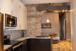 Gorgeous, Executive 3 Bedroom Apt. in the Heart of Downtown July