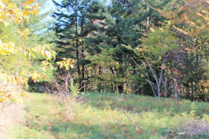 Freehold Lot for $105,000--120' x 120'