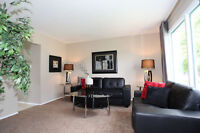 3 bedroom house in Southdale - Available early September