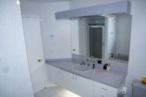 Vanity, sink and faucets
