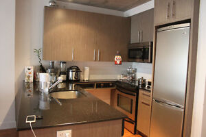 Furnished condo 3 1/2 in Griffintown with gym, pool, terrace