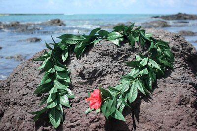 Silk Leis Maile Green - Silk Hawaiian Leis (Maile Lei)