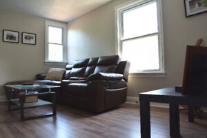 Large 1-Bedroom  $1,175/mo includes utilities and internet