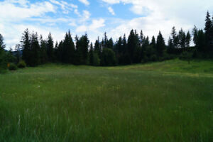6.4 Acres FOR Sale on Christian Valley Rd, Westbridge, BC.