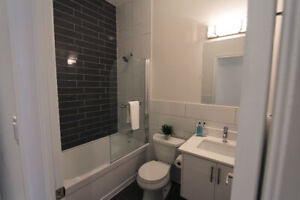 Newly Renovated 2 Bedroom Apartment (Annex Bloor and Bathurst)