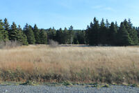 6.7 Acres in Scenic Pouch Cove