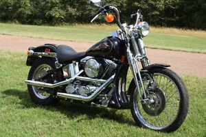 Cherche Harley-Davidson Softail ou Dyna Wide Glide