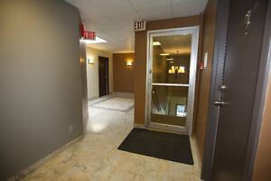 EXCLUSIVE -- BACHELOR APARTMENT in Historical Downtown Galt Cambridge Kitchener Area image 6
