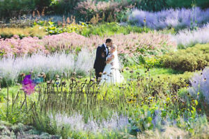 Professional Wedding Photography - Prices starts at $1350