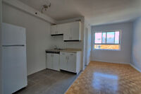 MCGILL GHETTO LARGE BRIGHT RENOVATED STUDIOS FREE WIFI INCLUDED
