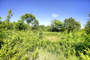 REDUCED PRICE! PANORAMIC VIEW ON 10 ACRES, BANCROFT ON Peterborough Peterborough Area image 7