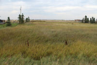 Amazing location 15 mins East of Calgary in Dalroy