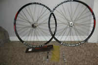 29 inch Elsworth mtn bike wheels