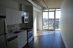 2 Bedroom (or 1 + Den) - Private & Rooftop Balcony - Luxury Unit