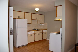 Attention U of W Architecture Students --  Rooms Available Cambridge Kitchener Area image 7