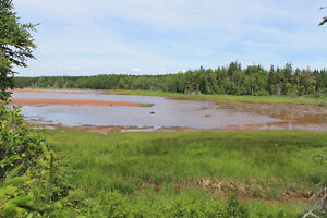 3.3 Acre Wooded Waterfront Building Lot