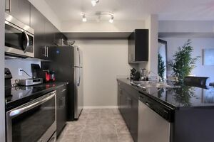 Amazing - Brand New Condo - 2 bedrooms / 1 bath - Vita Estates