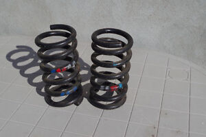 Mercedes rear coil springs