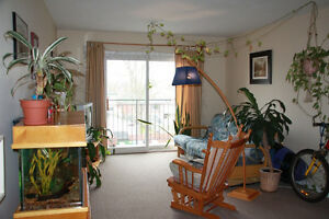 1BDRM APT,Utility Parking Internet Inclusive, Feb. 1 or Mar. 1st