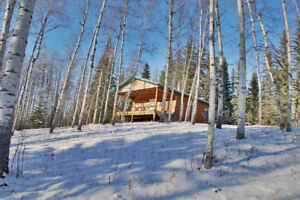 77 treed acres with cabin