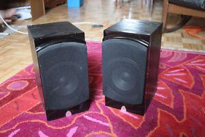 Haut-Parleurs Precision Acoustics PA6XB Speakers