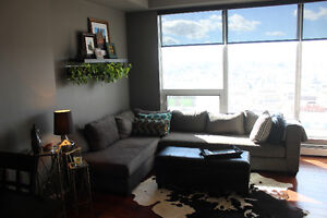 Stunning Downtown Apartment: 2 Bed   2 Bath (Furnished or Not)