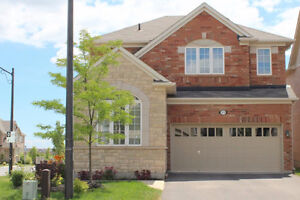 *Newer Basement 1 BD Apt, private entrance, MILTON from Sept 01*