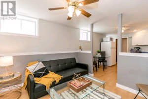Bright Professionaly Finished 1 Bedroom Apartment