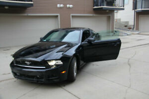 Ford Mustang 2014, Low mileage, low price, like new. call me now