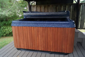 Pacific Meteor Spa Hot Tub for sale