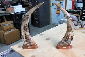 REAL HAND CARVED WATER BUFFALO HORNS