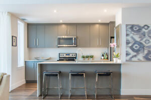 1 bedroom plus den in gorgeous LuxorWest