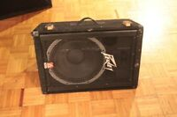 Peavey Speaker (single)