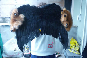 Halloween Costume Wigs and Wings