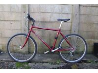 "Retro Specialized Mountain Bike 18"" - GREAT condition"