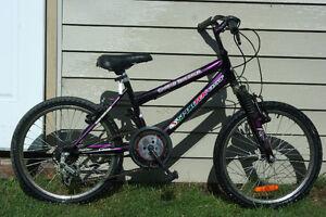 "20"" wheels mountain bike for youth"