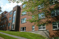 Part-time Cleaner, Maplehurst Apartments, Dartmouth