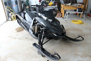 Mint shape Arctic Cat M11