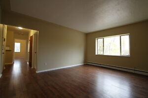 Wortley Village 1 Bedroom Hardwood Floors and Controlled Entry London Ontario image 5