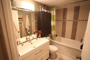 1 BDR ALL INCLUDED FIRST MONTH JUST $500