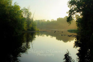 Majestic Memories Photography-just starting out Cambridge Kitchener Area image 9