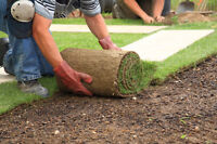 Cheapest landscaping, gardening, yard care in town free quotes