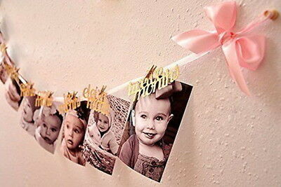 1-12 Month Photo Banner 1st Birthday Girl Decorations Monthly Photo Banner US
