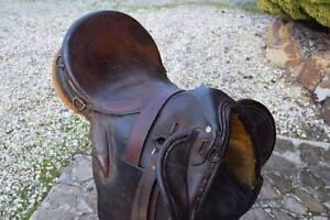 Australian stock saddle Exeter West Tamar Preview