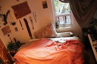chambre à louer sur le plateau pour l'été!