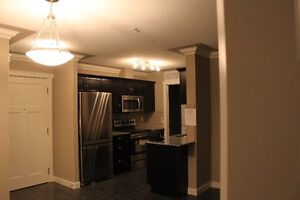 Luxurious 2 Bedroom Condo for rent in Northeast Edmonton! Edmonton Edmonton Area image 5