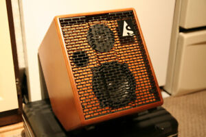 Guitar Amp Acoustic Solutions - 75 Godin