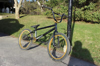 Black and Gold BMX - Lightly Used