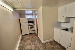 NEWLY RENOVATED BASEMENT APARTMENT WITH HEAT AND LIGHTS INC