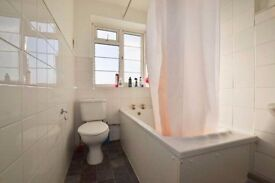 Beautifully decorated double room minutes to Elephant and Castle